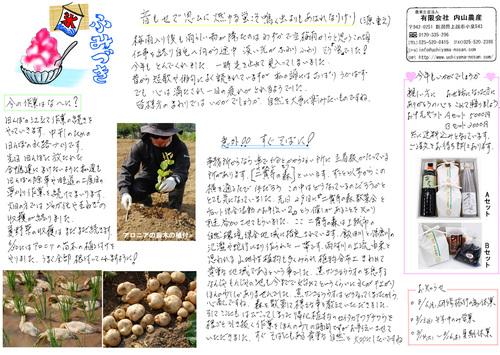 内山農産ニュースレター7月号
