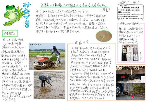 ニュースレター6月号