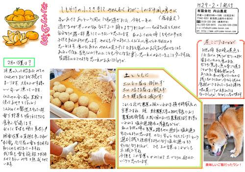 内山農産ニュースレター2月号