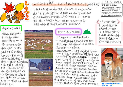 内山農産ニュースレター11月号
