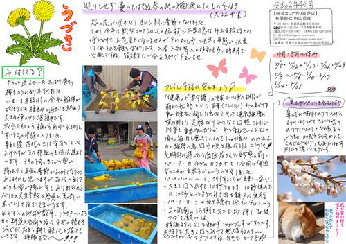 内山農産ニュースレター4月号
