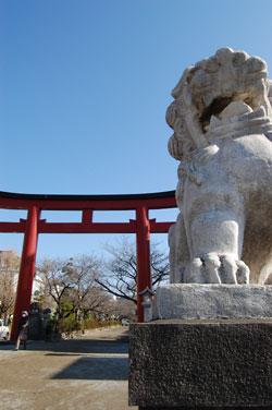 段葛を歩いて鶴岡八幡宮へ