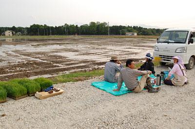 農道に座り込んで、ちょうどこびりの最中