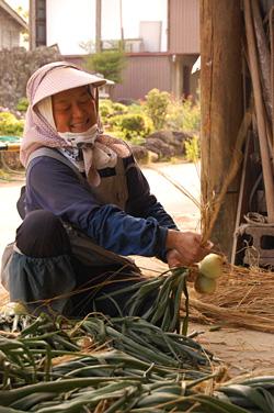 玉ねぎを編む作業