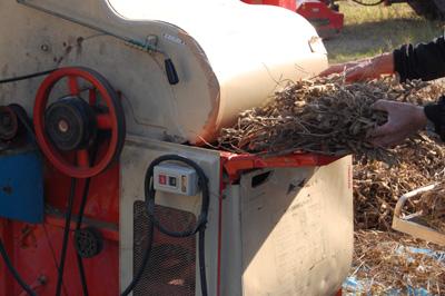 大豆の生木を投入