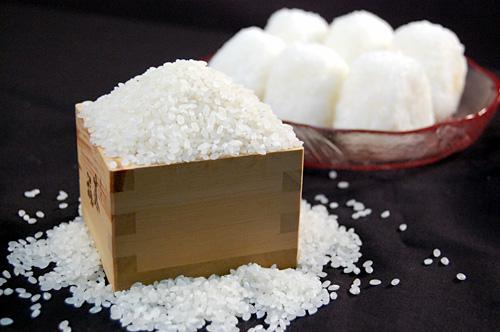お米を入れた1合枡と塩むすび