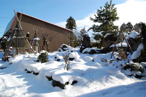 青空に真っ白な雪