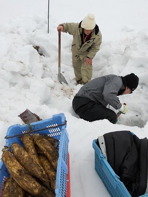 雪を掘っていきます