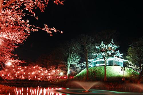 内堀の噴水と夜桜と高田城三重櫓