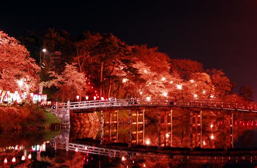 夜桜と白木の極楽橋