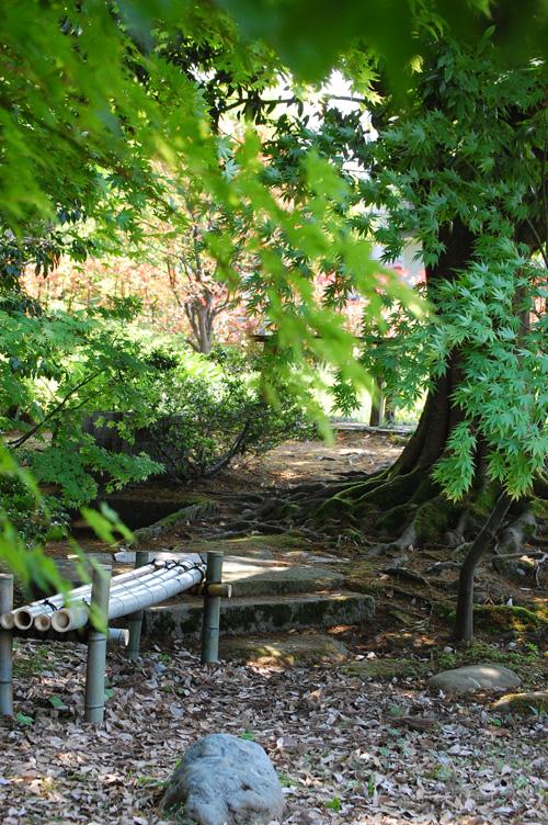 竹製のベンチ