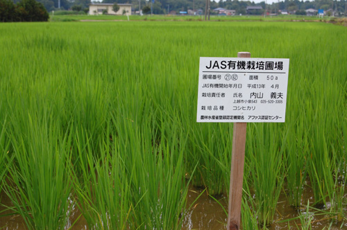 JAS有機栽培圃場の看板