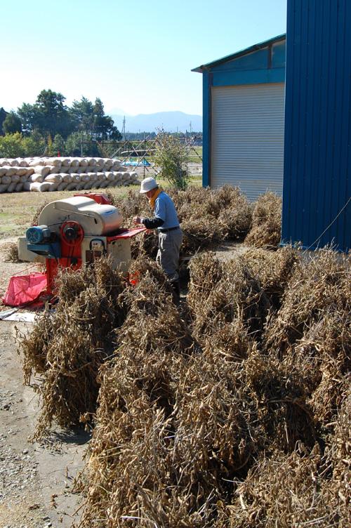 大豆と脱穀機