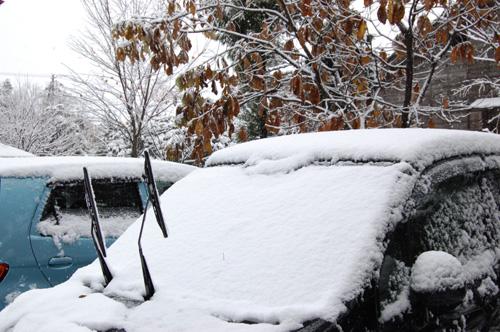 フロントガラスに雪