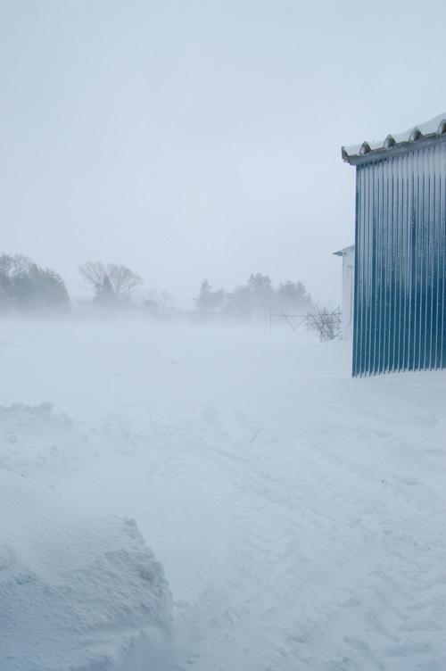 地吹雪がひどい