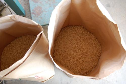 米袋の中に溜まっていきます