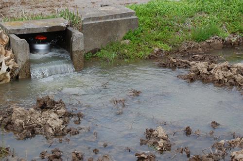 田んぼに水を引き込みます