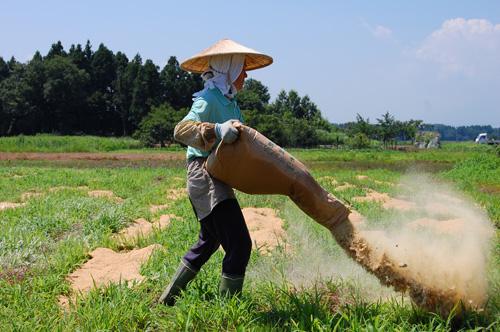 米ぬかを散布
