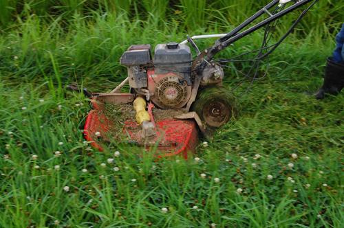 草刈り 雑草 除草 自走式草刈機