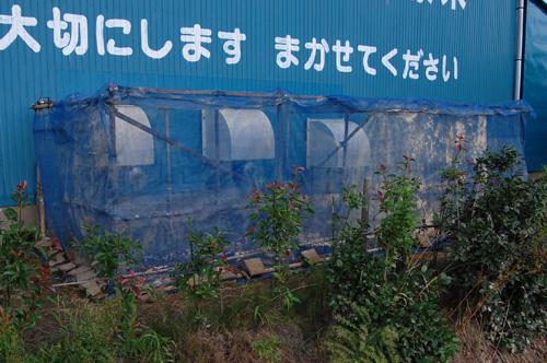 ライスセンター 乾燥機 排出口 粉塵 稲刈り 準備