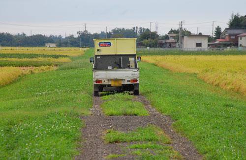 稲刈り 刈り取り 新米 お米 わたぼうし もち米 運搬 軽トラ グレンコンテナ