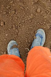 摺り足で土を踏みながら